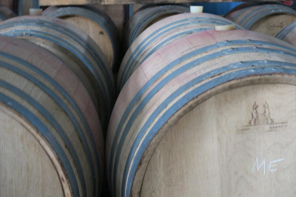Peloponnesian Wines – Wine Tourism